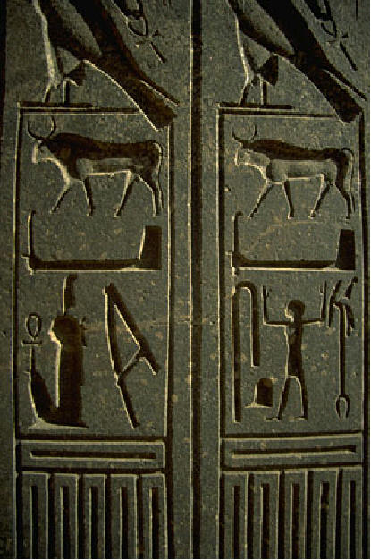 Picture of hieroglyphs